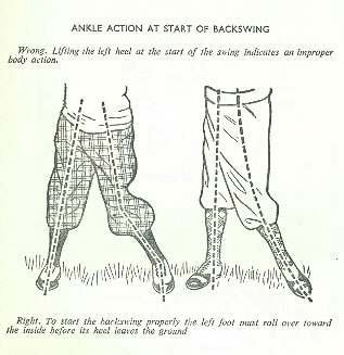 Ankle Action At Start of Backswing By Alex J Morrison